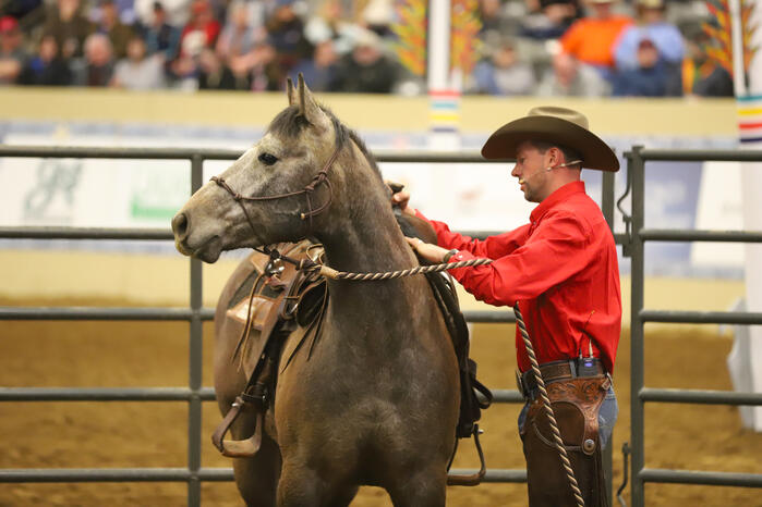 Quadrant Australia Horse Deals Horsemanship Tour to USA4