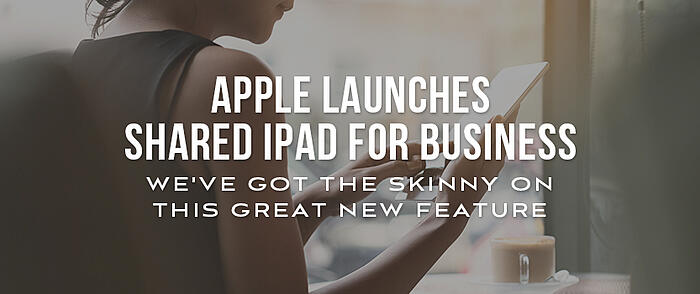 "Woman using an iPad with overlaid text that reads, ""Apple launches Shared iPad for Business. We've got the skinny on this great new feature."""