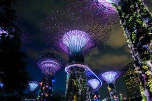 MGS Singapore 21