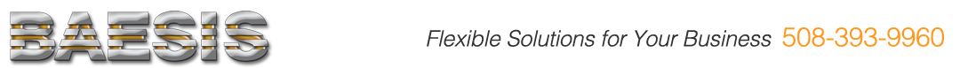 BAESIS flexible solutions for Your Business
