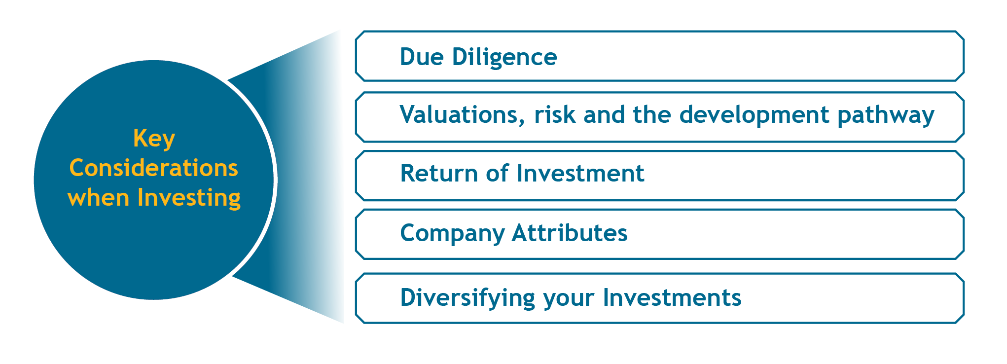 Key considerations when investing