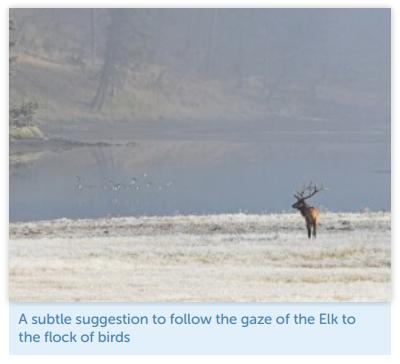 elk-example Landing Page