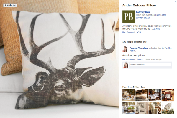 antler pillow resized 600