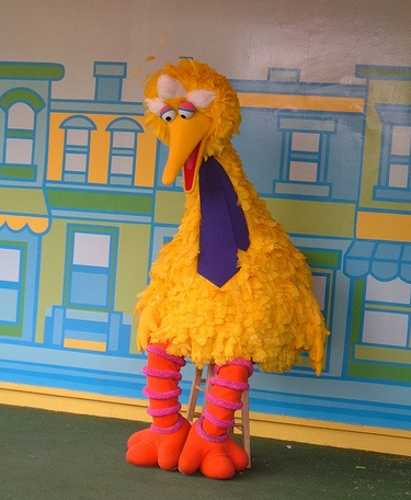 big bird presidential debates romney