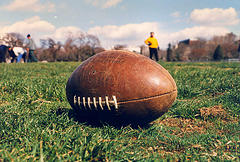 football image resized