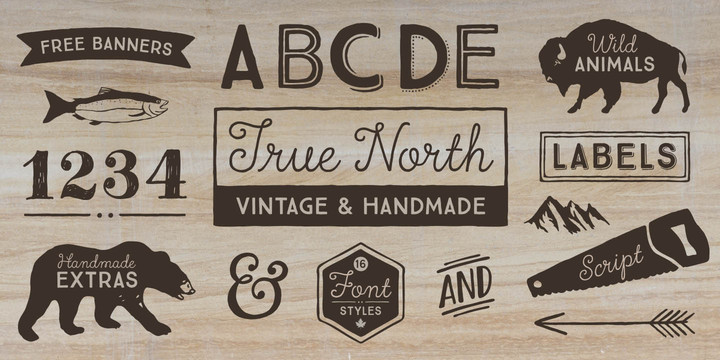 true-north-font