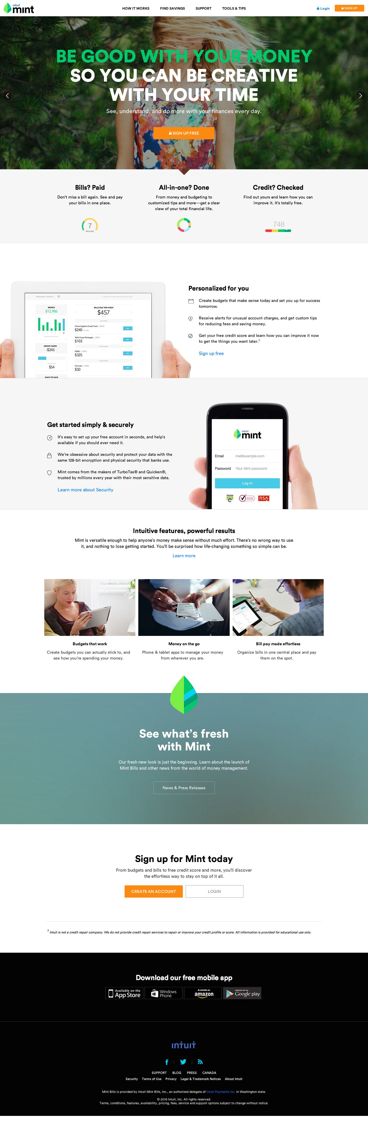 Perfect Mint Website Design. VIEW ENTIRE HOMEPAGE