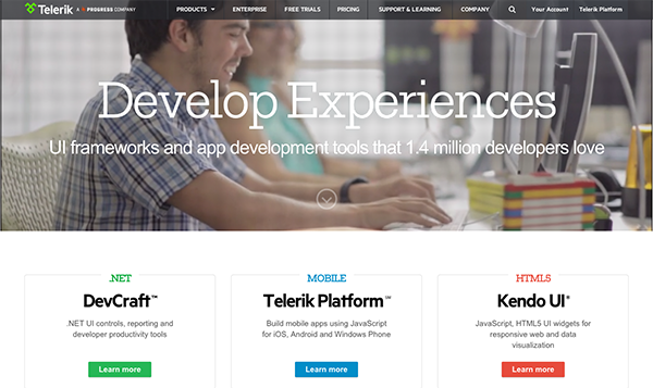 Ebsite Homepage Design Examp Telerik - Biosciencenutra