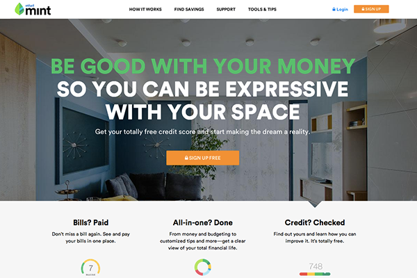 Mint Website Design. VIEW ENTIRE HOMEPAGE