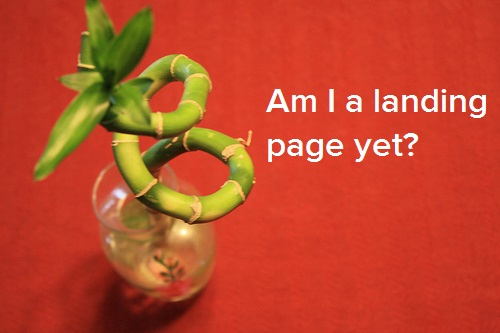 what-is-landing-page