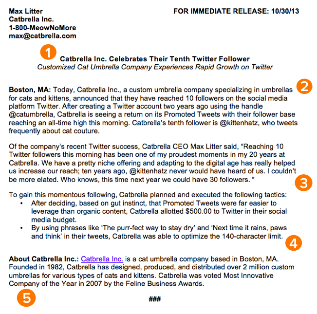 How to Write a Press Release [Free Template + Sample]