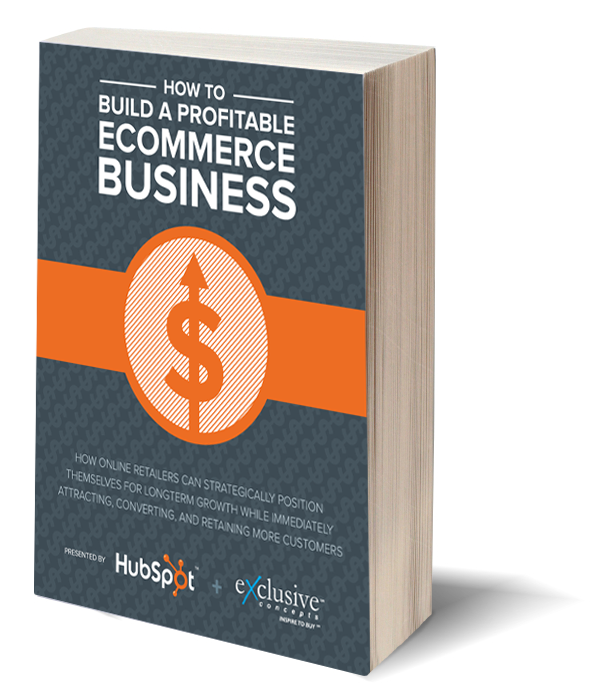 Free Guide: How to Build a Profitable Ecommerce Business