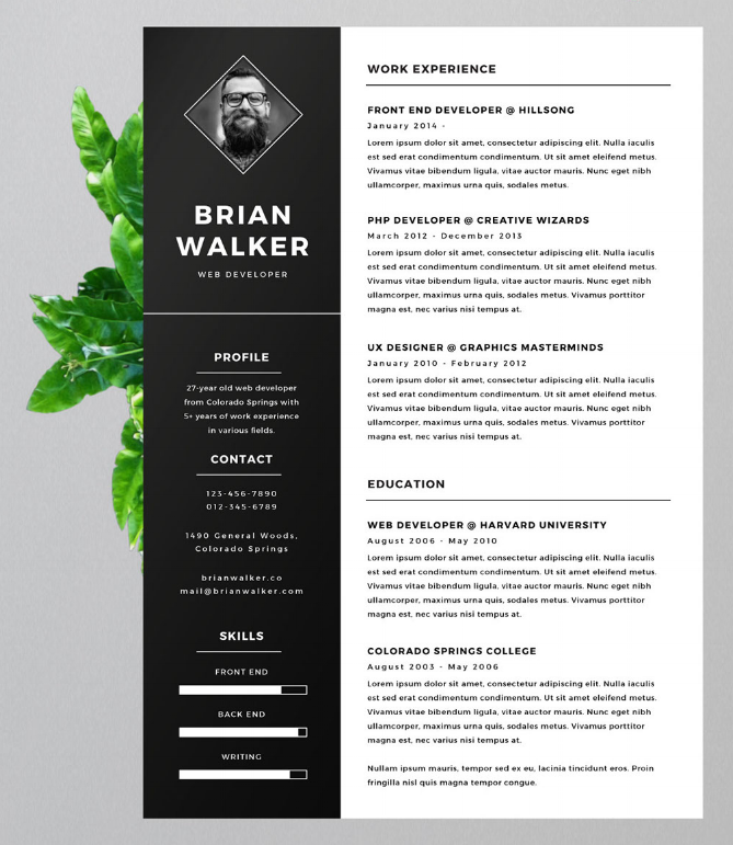 creative resume header creative resume header