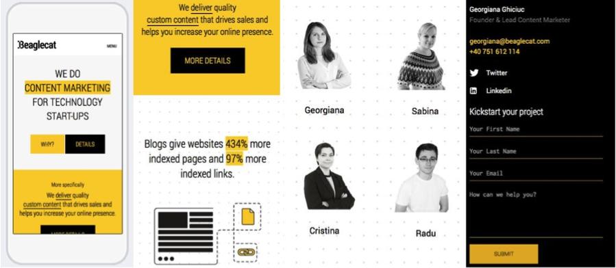 beaglecat-mobile-website.png