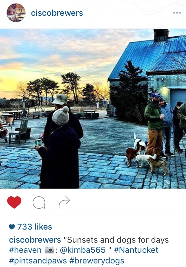 cisco-brewers-instagram-repost.jpg