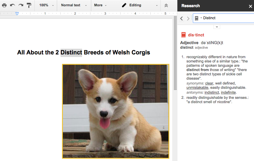 how to change dictionary in google docs