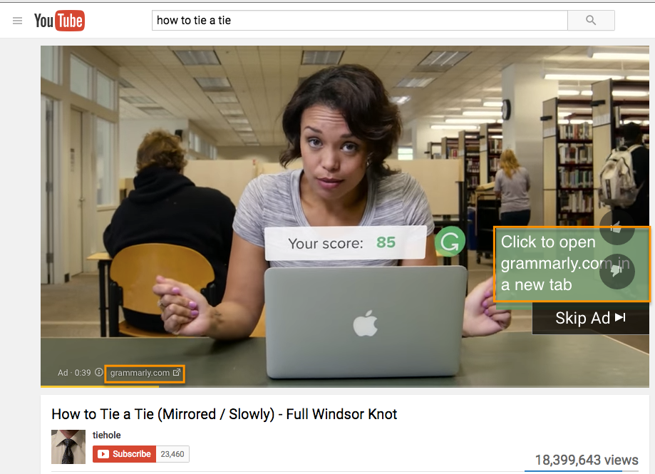 TrueView In-Stream video ad by Grammarly