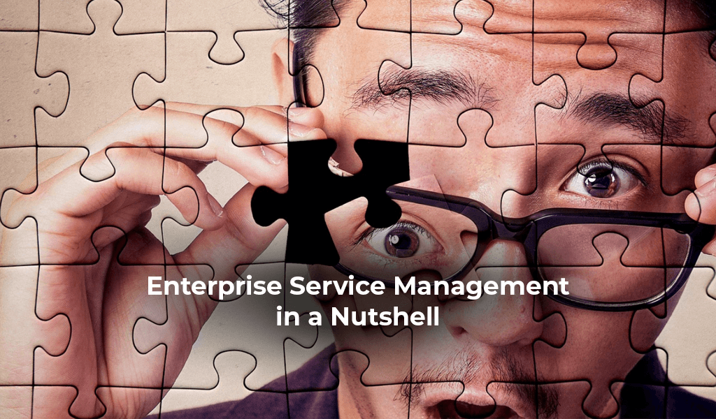 Enterprise-Service-Management-in-a-Nutshell