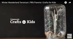 Picture of Winter Wonderland Terrarium from PBS Parents. Link takes you to PBS arts and crafts page.