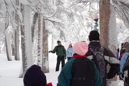 A snow ranger leads a group of students through a snowy forest.