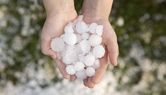 hail-damage_782x422px