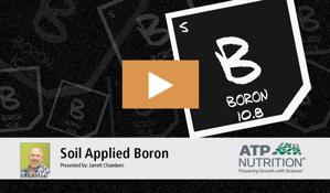 Soil Boron