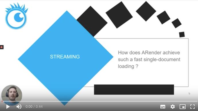 ROI video Streaming