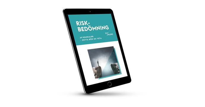 Riskbedömning-1