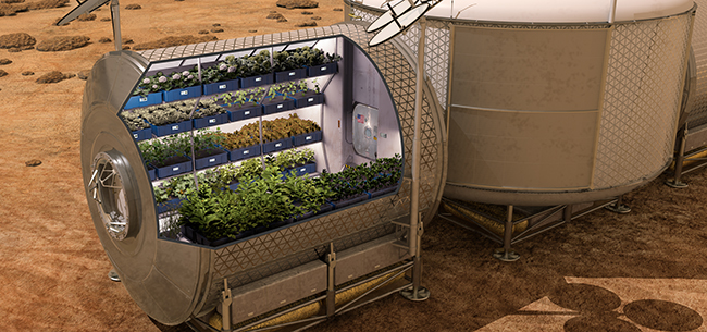 Growing Plants in Space - Is it Possible?