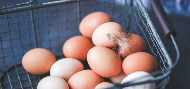 Why Are Some Eggs Brown?