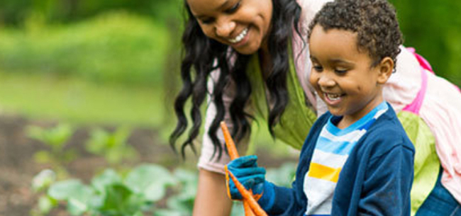 4 Tips to Get Kids Involved in the Garden