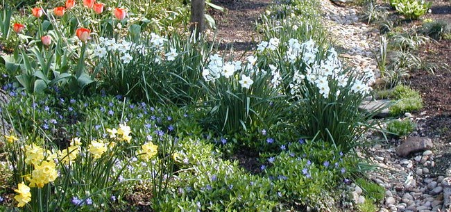 Are Your Borders Ready for Spring?