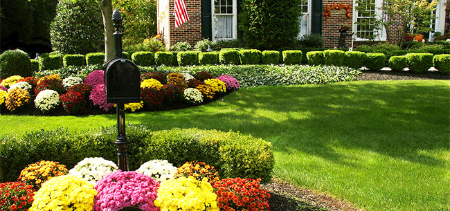 5 Simple Tasks to Make Your Yard Look Fab This Fall