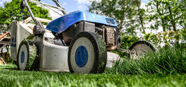 5 Tips to Help Your Lawn Recover from Summer Stress