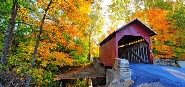 Five Beautiful Destinations to See Fall Foliage