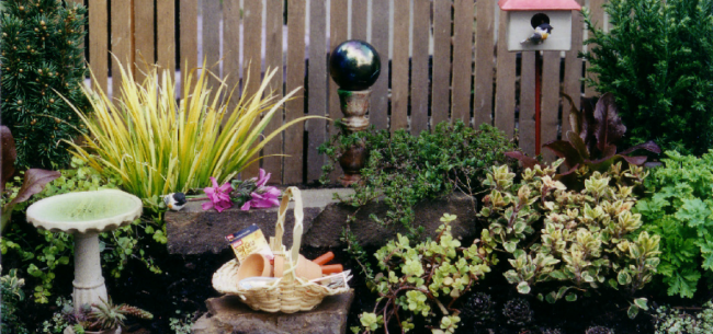 Resources and Inspiration for Miniature Gardens