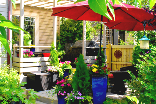 5 Ways to Add Privacy to Your Patio