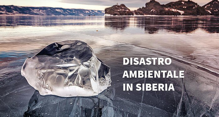 Disastro ambientale in Siberia