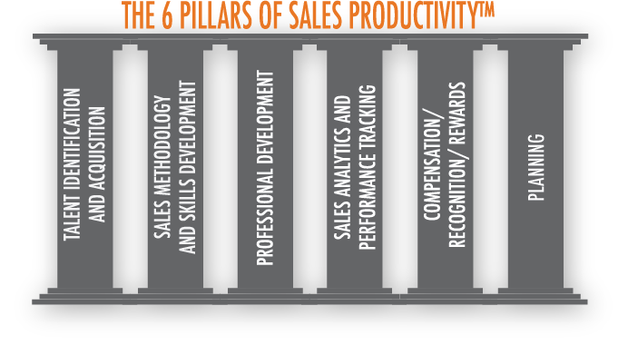 the 6 Pillars of Sales Productivity