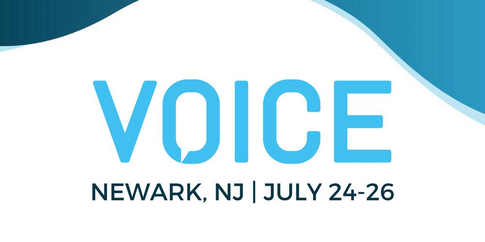Voice Summit July 2018 image