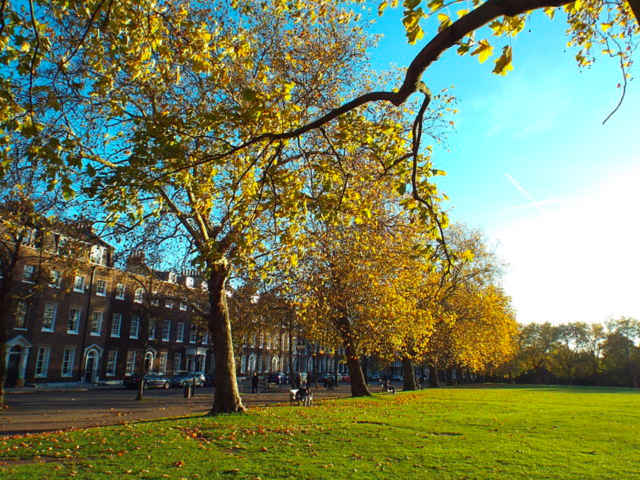 Commercial Property Area Guide: Highbury - London