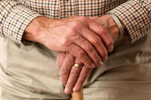 aged-cane-elder-33786 v2