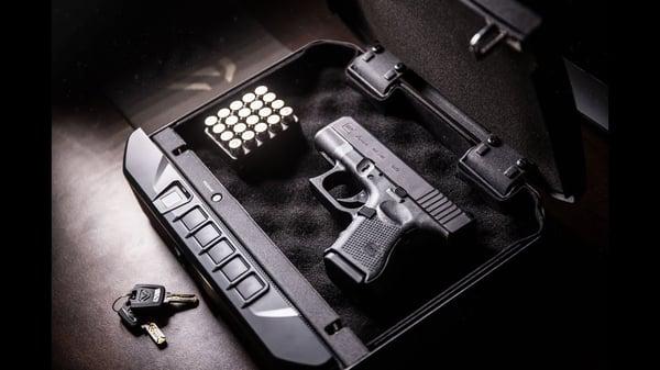 vaultek-gun-safe