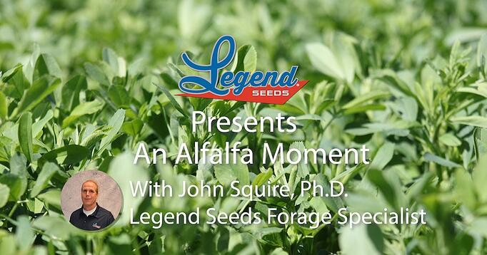 Alfalfa Moment-facebook