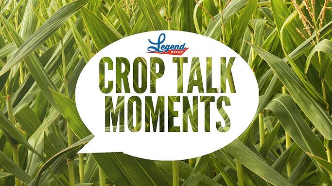 Crop Talk Moments-1