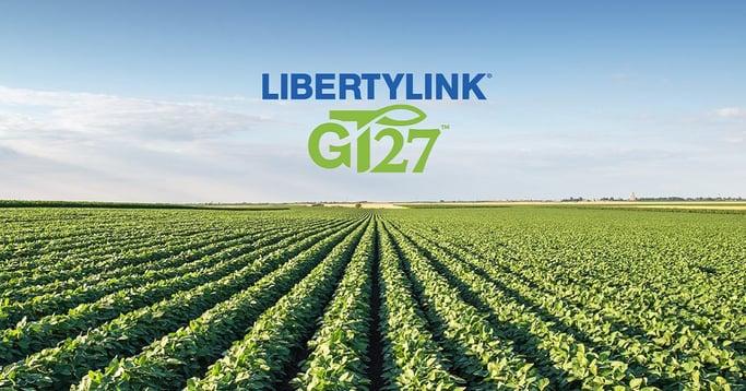 LLGT27 facebook2