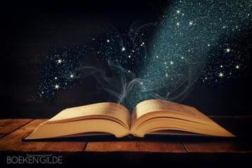 Literair-type-