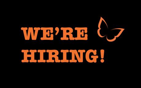 We're hiring! Full-stack developer