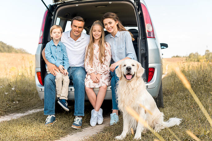 Pet Insurance - Taking Care of a Family Member