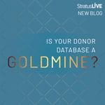 Goldmine_Instagram
